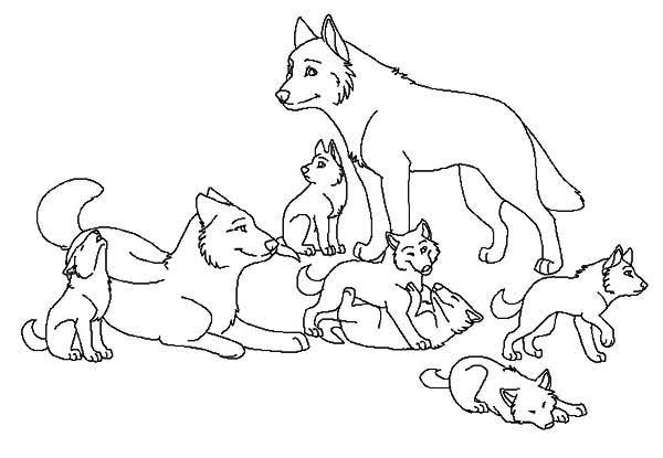Wolf Pack Free Coloring Pages On Masivy World Coloring Home