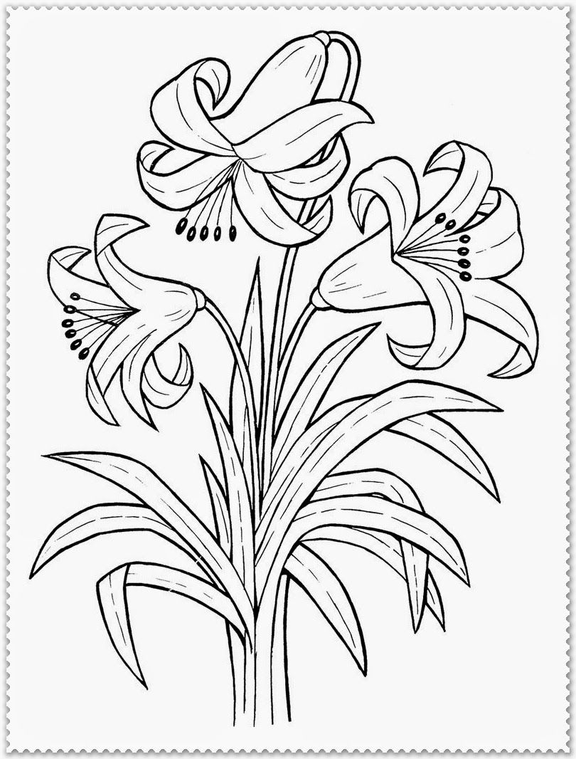 Printable Spring Flower Coloring Pages - Coloring Home