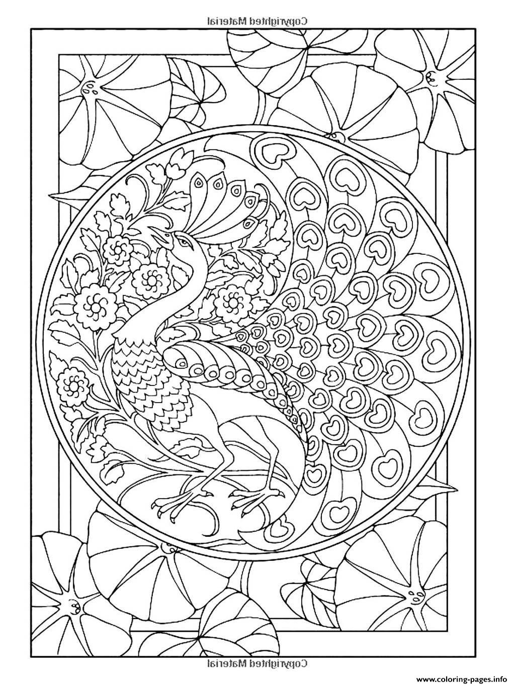 Peacock Coloring Pages For Adults - Coloring Home