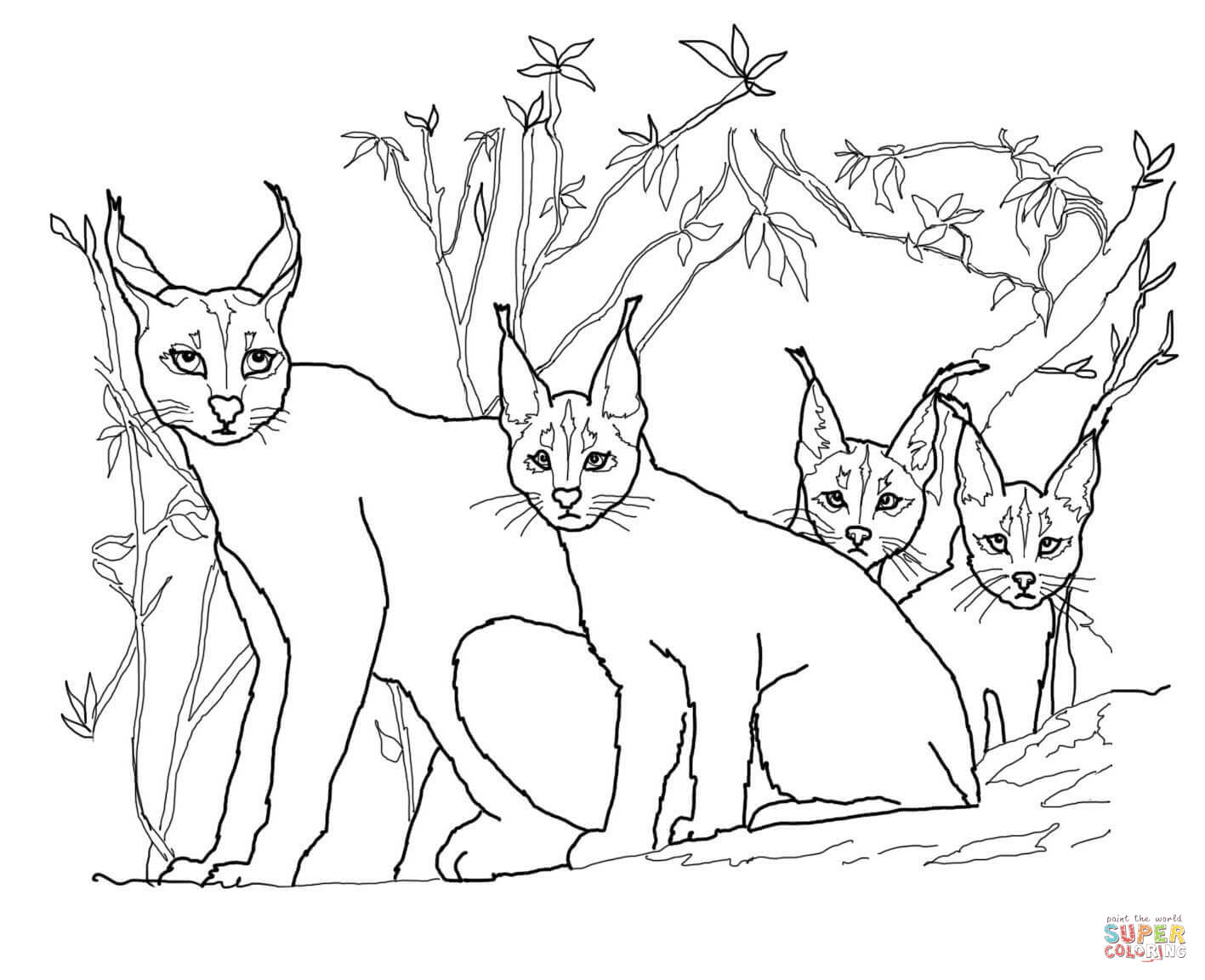 Caracal Kittens and Mother coloring page | Free Printable Coloring ...
