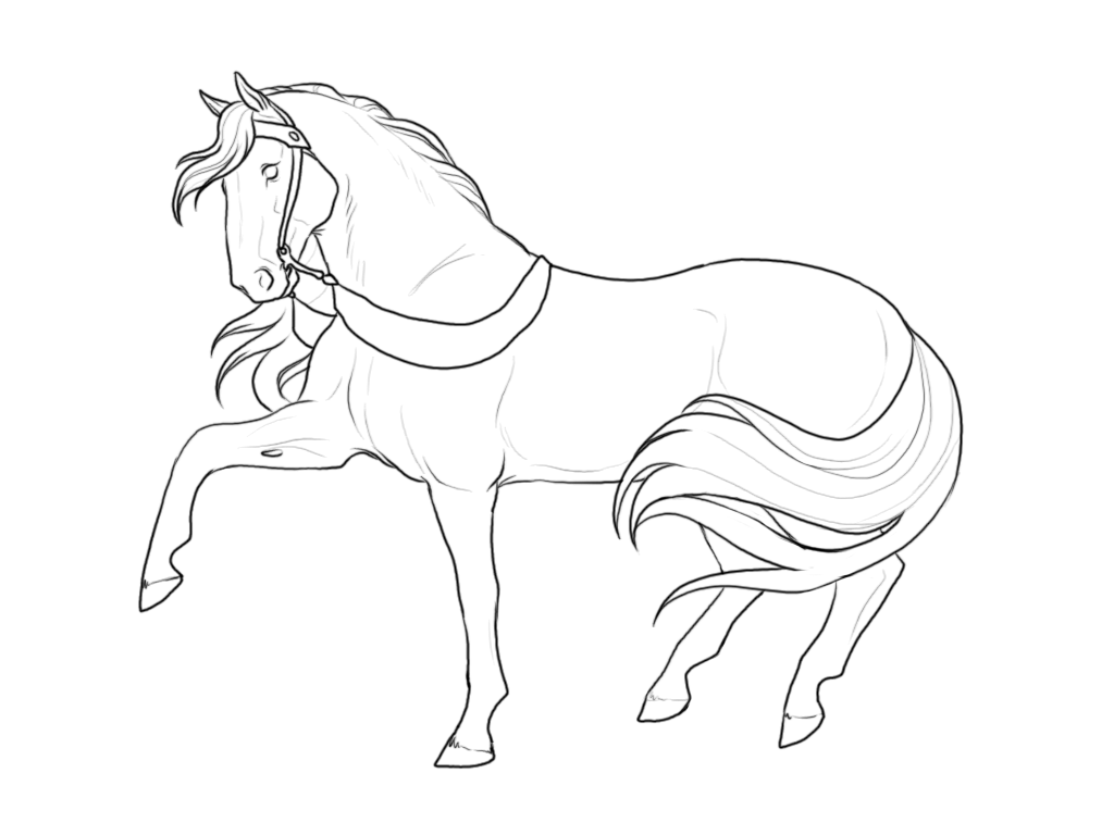 Breyer Coloring Pages High Quality Coloring Pages Coloring Home