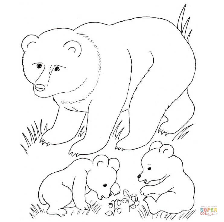 Woodland Animal Coloring Page - Coloring Home