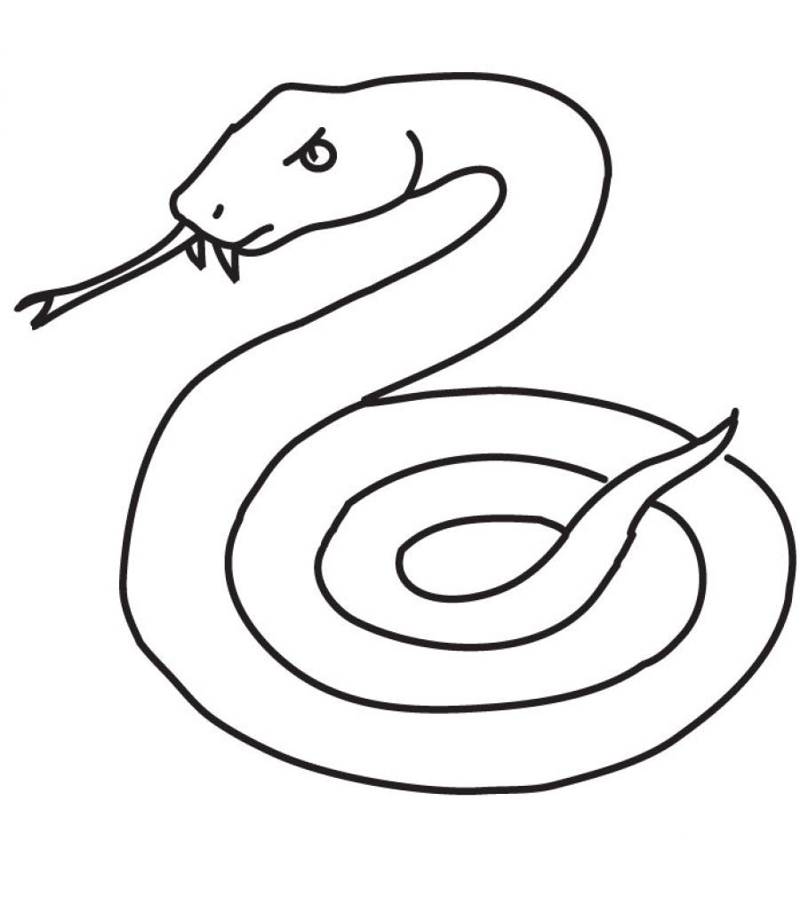 Copperhead Snake Coloring PageSnakePrintable Coloring Pages Free
