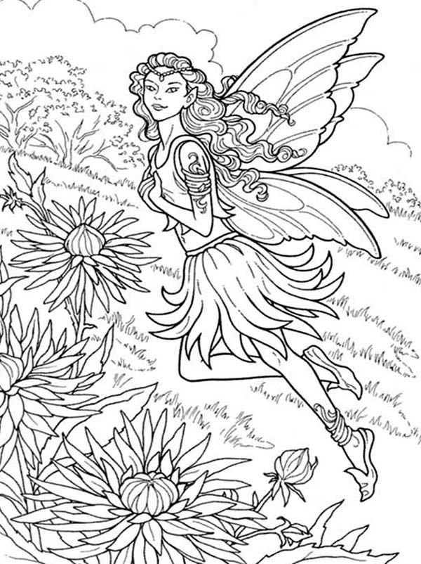 free detailed faerie coloring pages - photo#16
