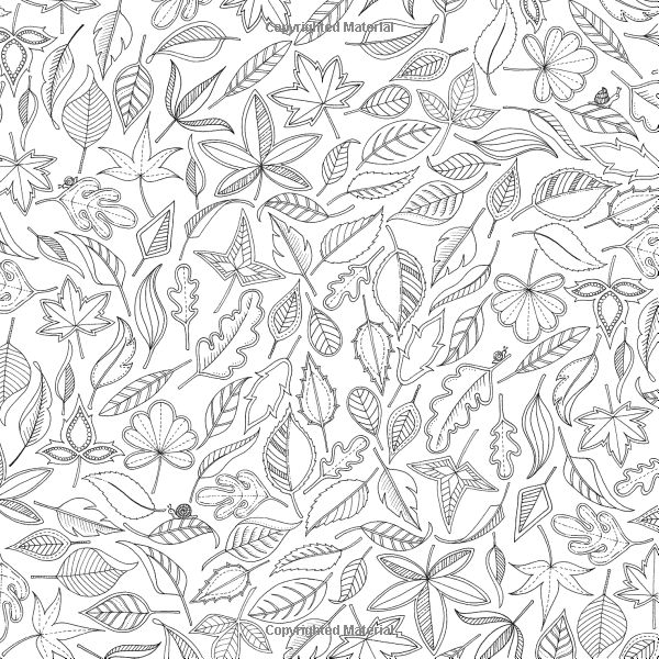 - Secret Garden Coloring Pages - Coloring Home
