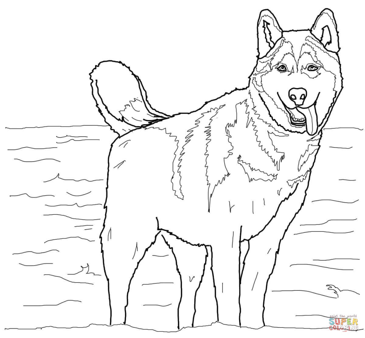 Siberian Husky Coloring Pages - Coloring Home