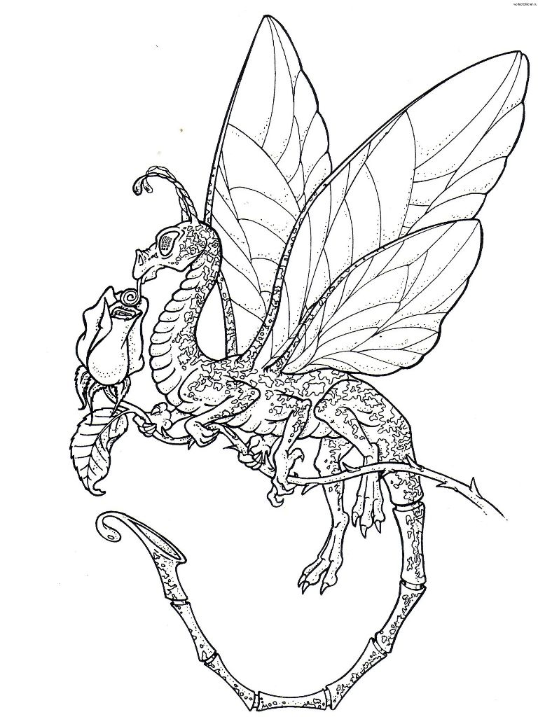 detailed dragon coloring pages - photo #31