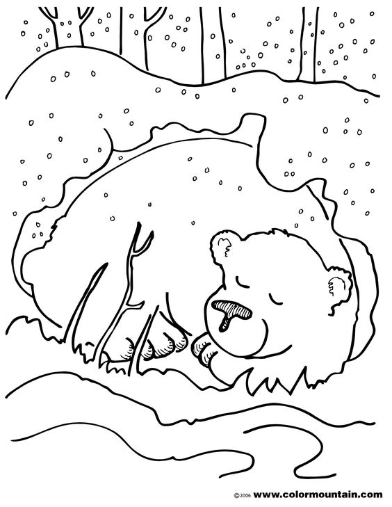 Bear Snores On Coloring Page