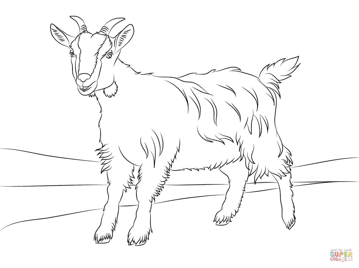 Billy Goat Coloring Page - AZ Coloring Pages