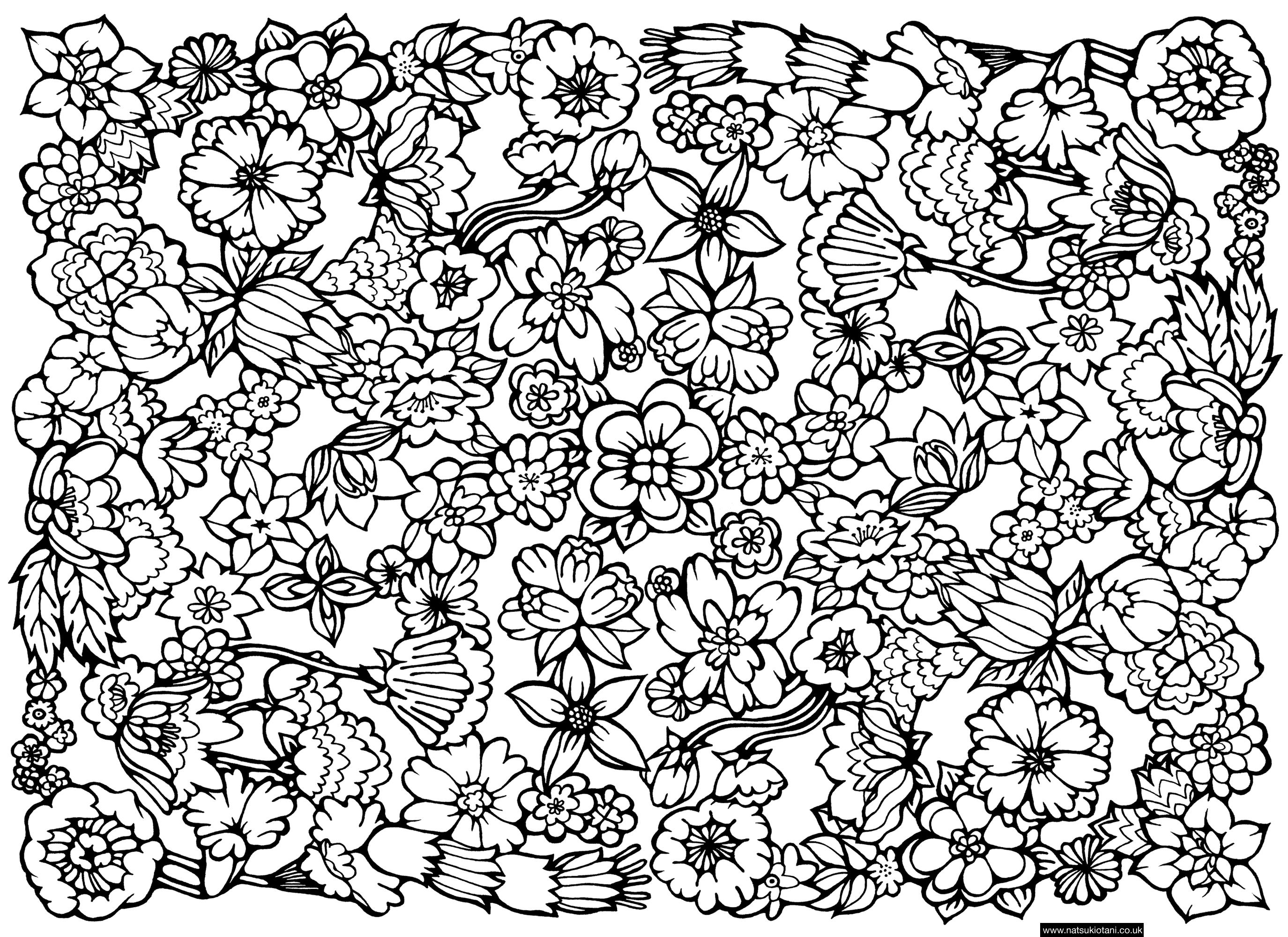 hard coloring pages for free - photo#17