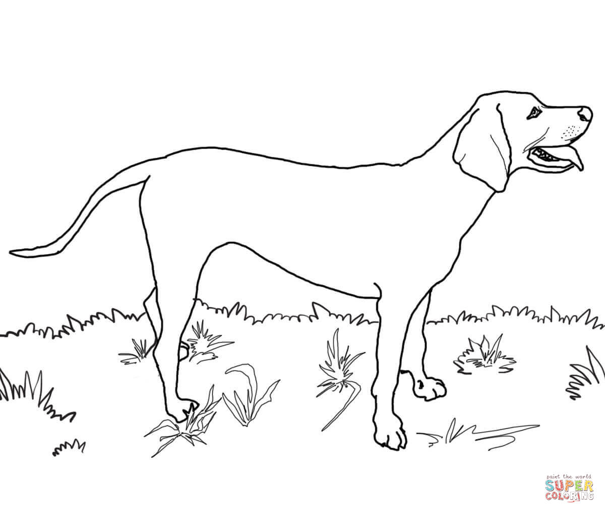 Great Dane Dog Coloring Pages - Coloring Home