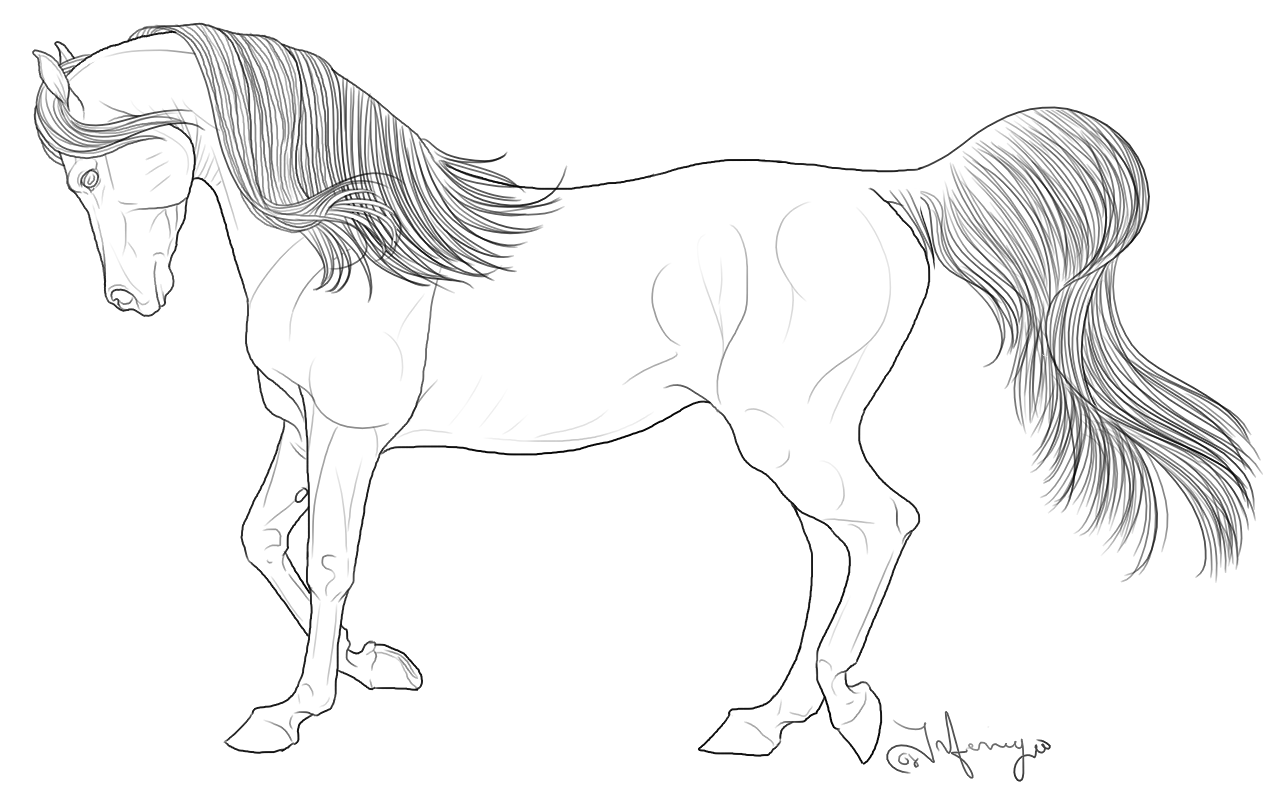 Coloring Pages Horses Heads Ribbon