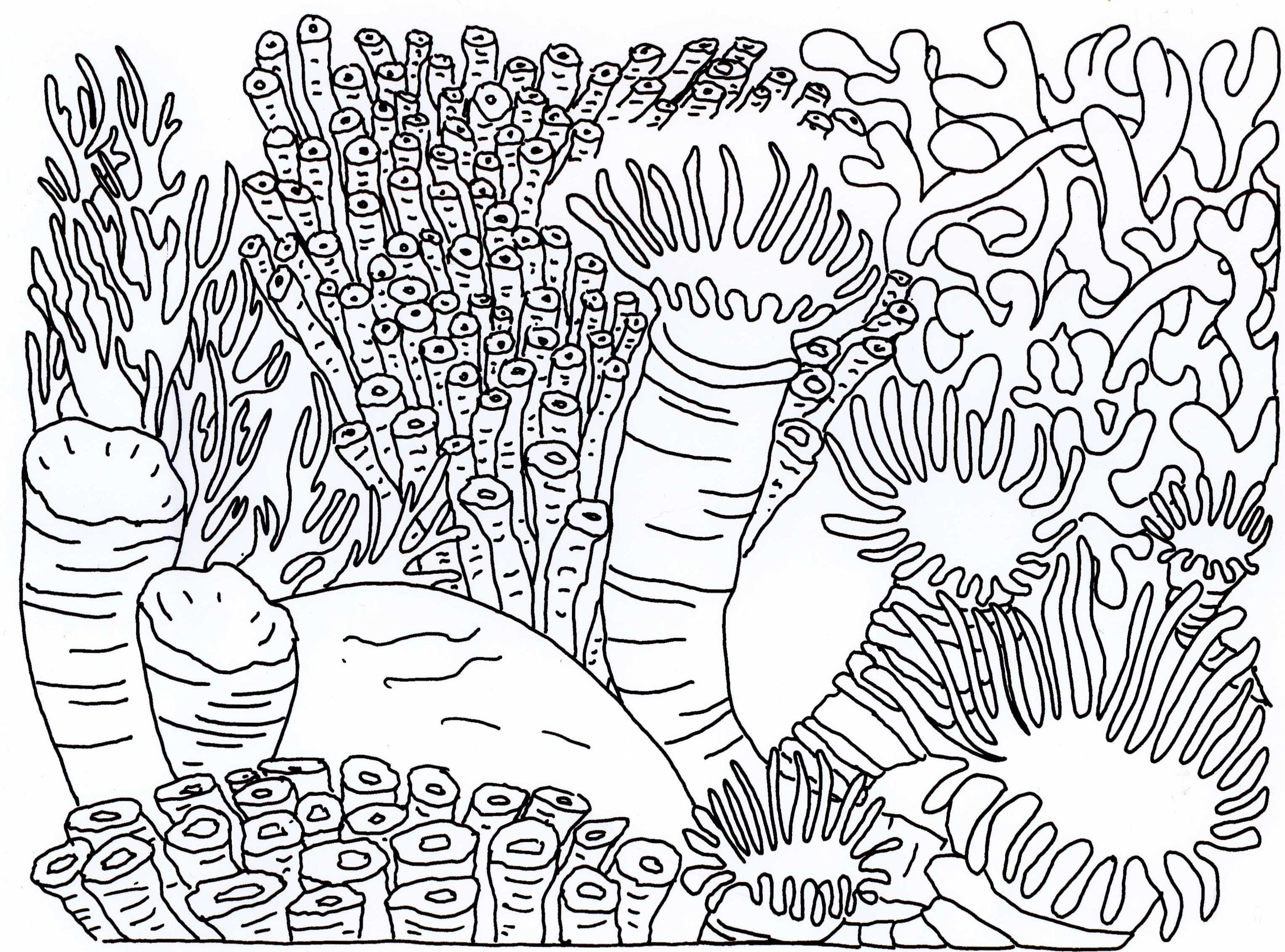 Coloring Book How Great : Great Barrier Reef Coloring Pages Coloring Home