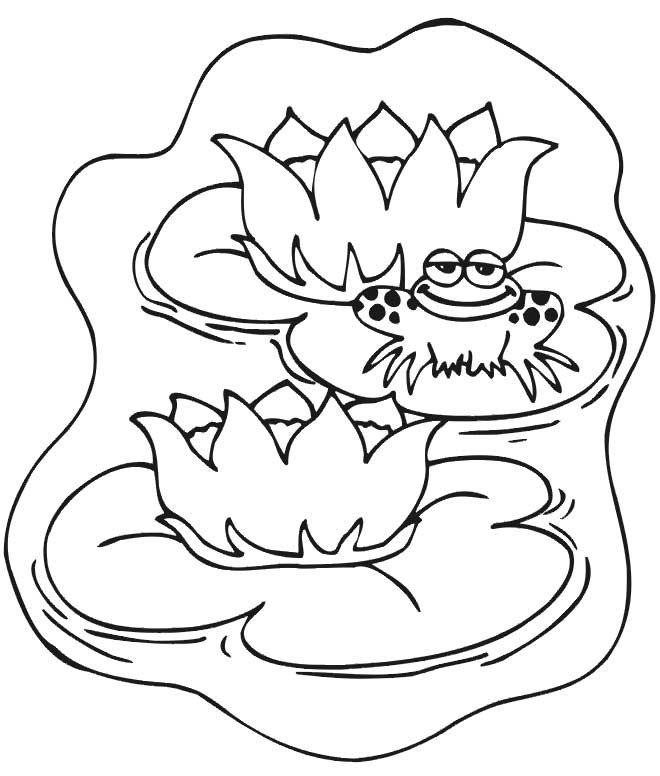 Free Coloring Pages Of A Frog In A Pond - Coloring Home