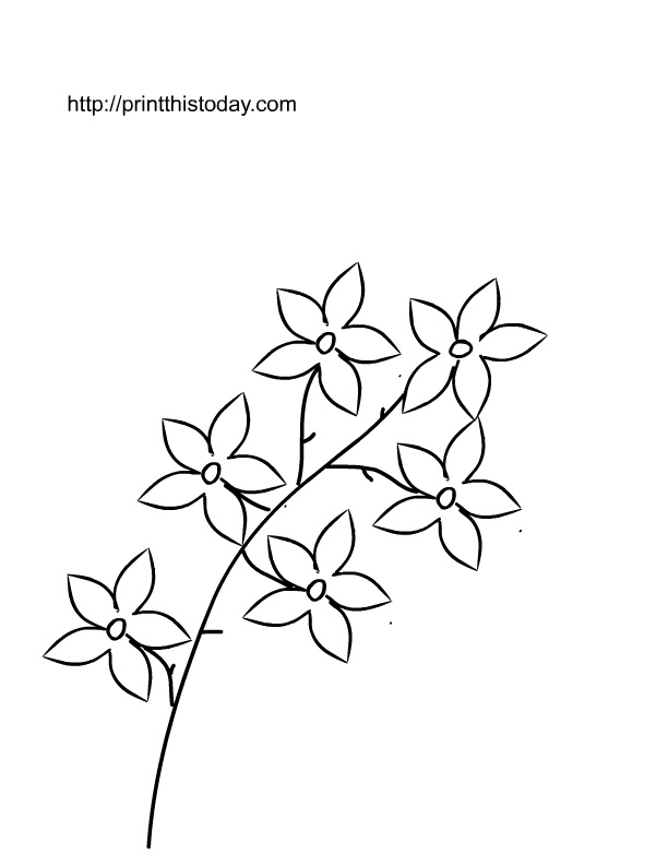 pretty flowers coloring pages - photo#14