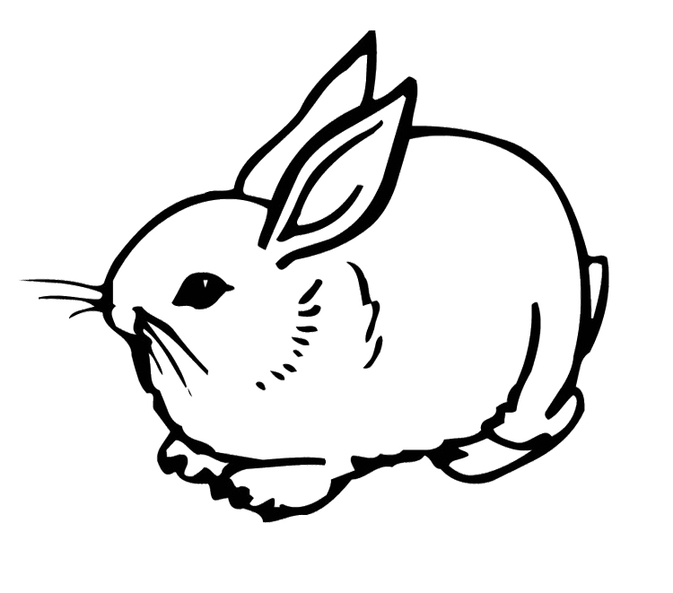 coloring pages rabbit - photo#26