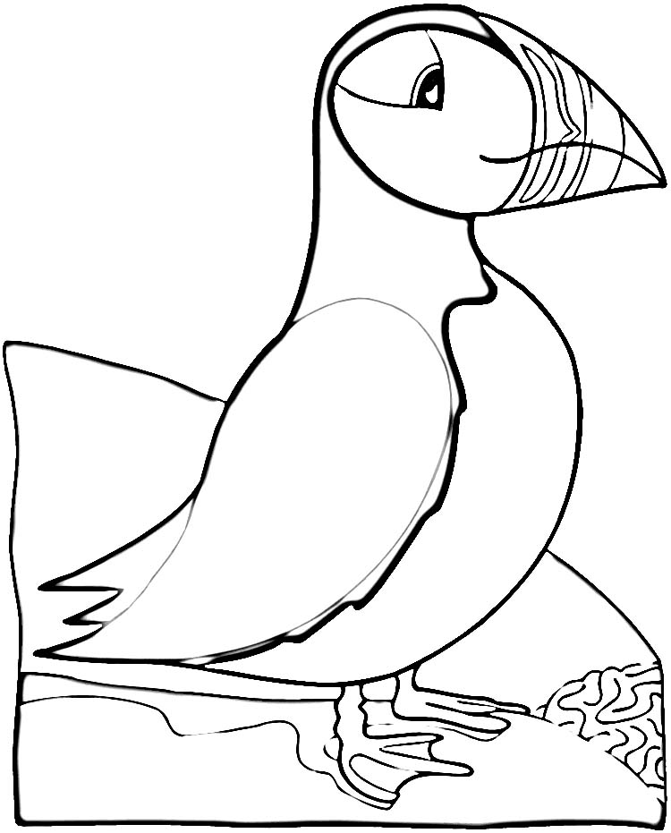 puffin coloring pages to print puffin coloring page az coloring pages