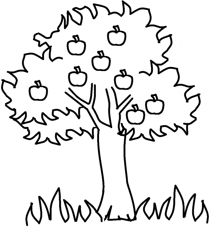 Apple tree coloring sheet az coloring pages for Apple tree coloring pages