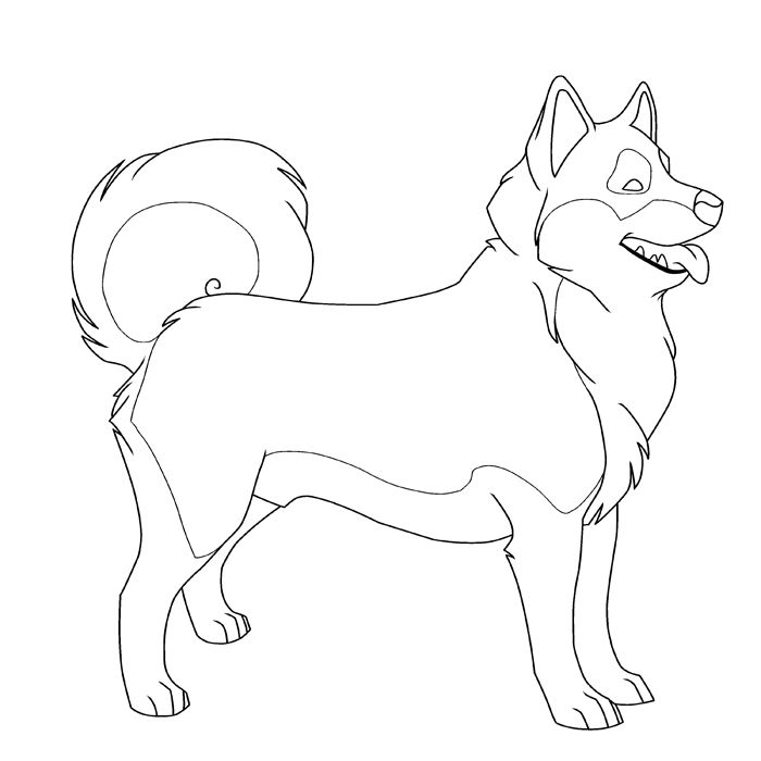 Coloring sheets, Husky and Coloring