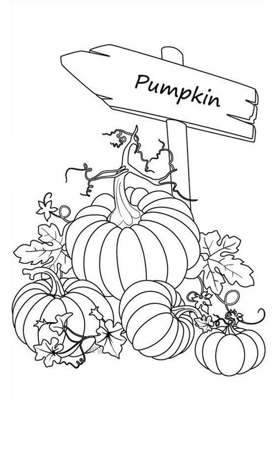 pumpkin patch coloring pages - pumpkin patch coloring pages printable az coloring pages