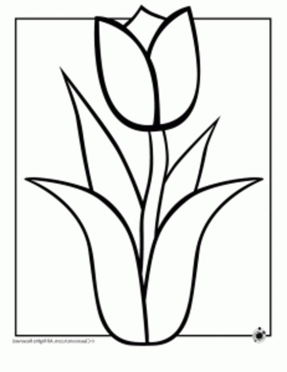 printable hawaiian flowers coloring pages - photo#33