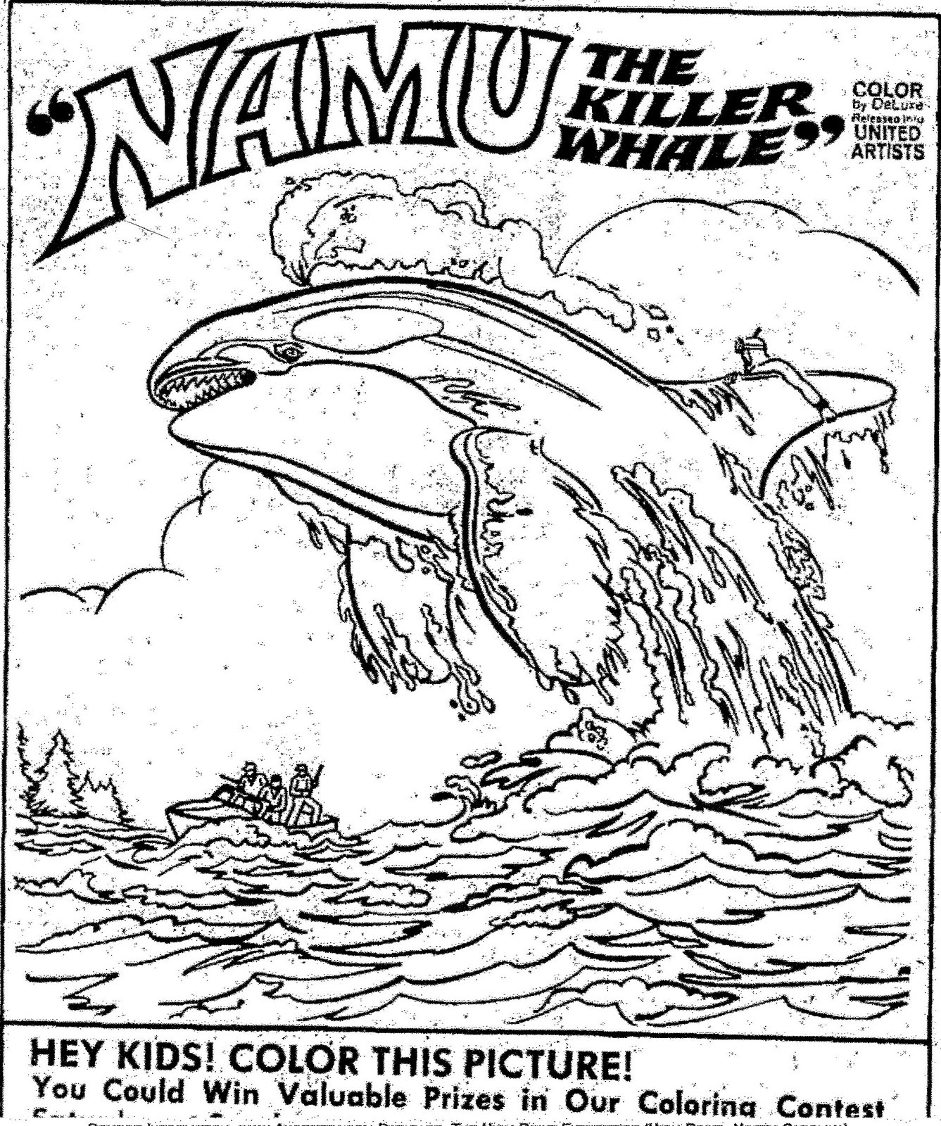 orca whale coloring pages coloring home
