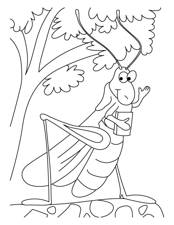 Grasshopper-the schoollover coloring pages | Download Free ...