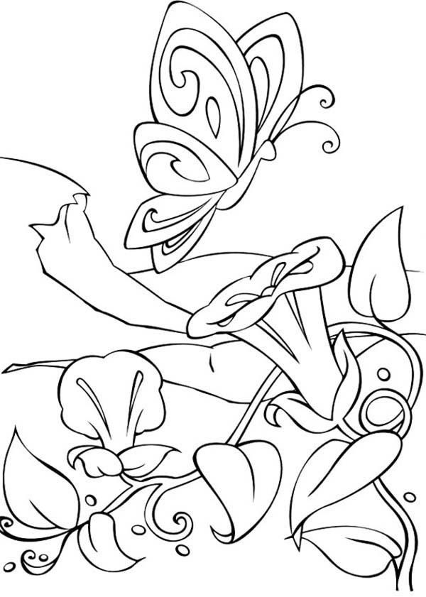 Barbie fairytopia free coloring pages