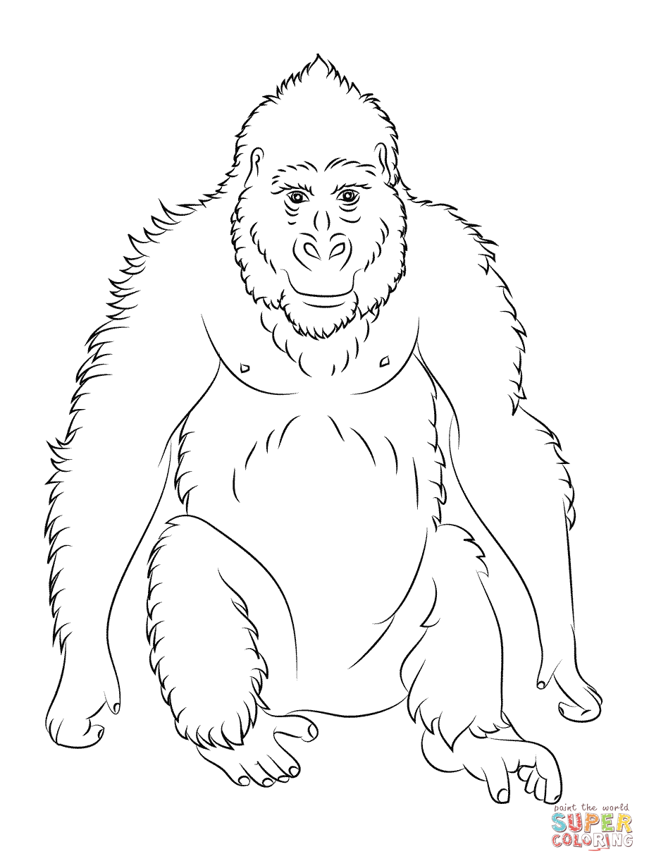 ape coloring pages printable - photo#14