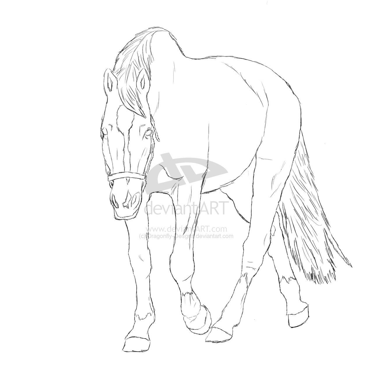 breyer horse coloring pages printable - photo#28