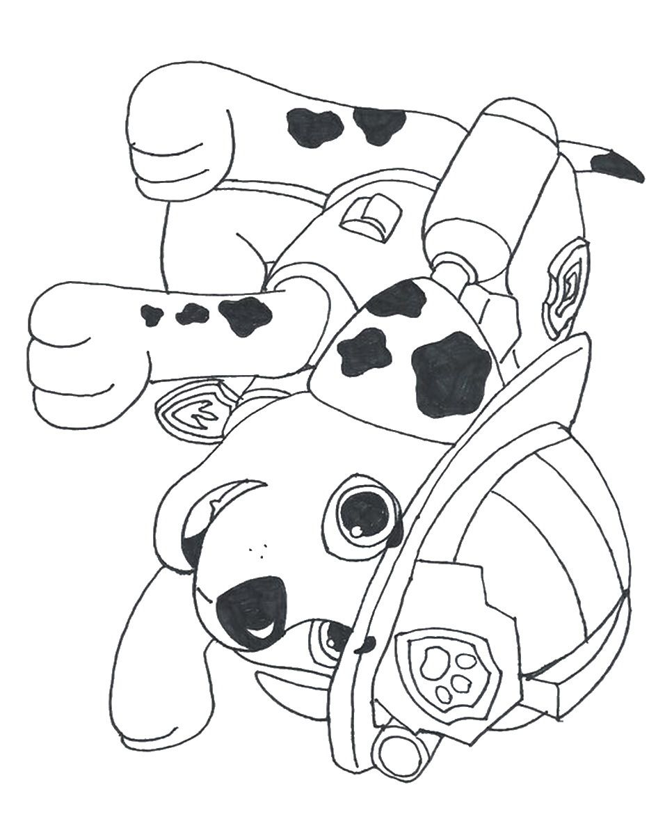 Coloring Pages For All Ages Paw Patrol : Printable paw patrol coloring pages home