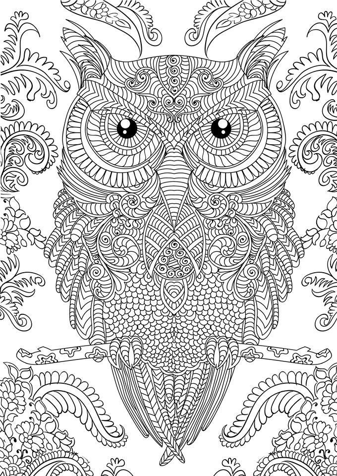 Adult Coloring Page - Coloring Home