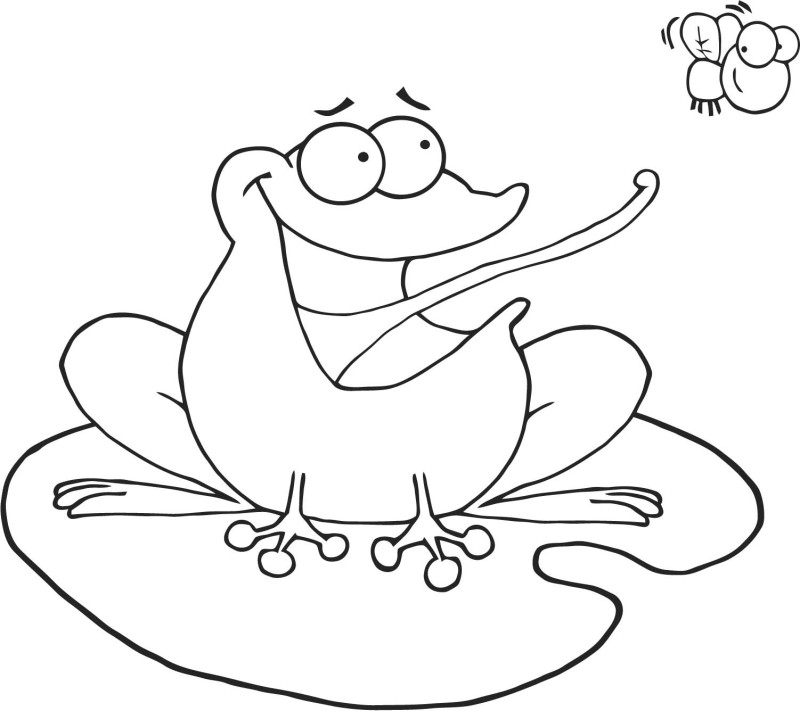 coloring pages frog - photo#24