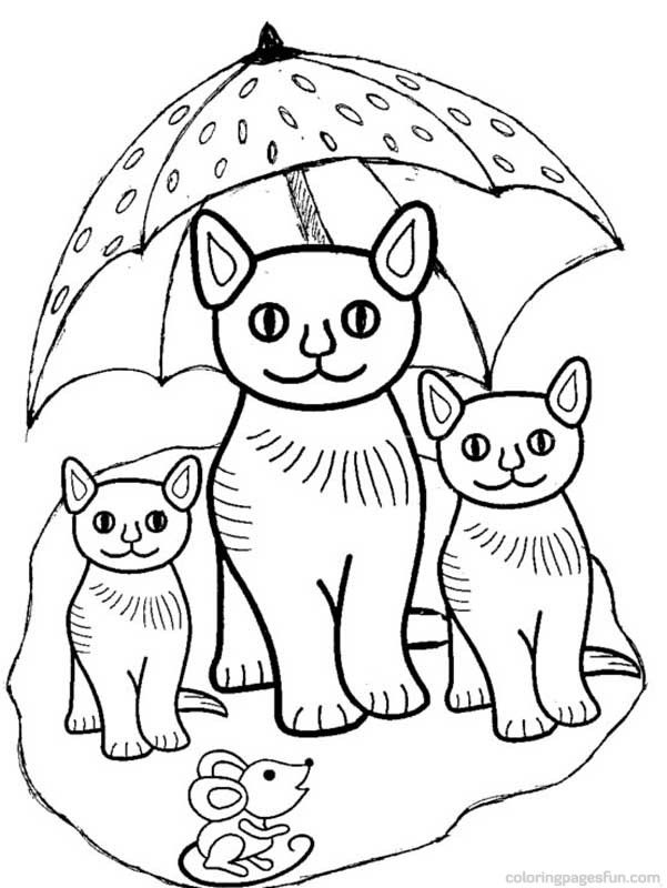 Coloring Pages Kittens Two Tone Cute Puppy