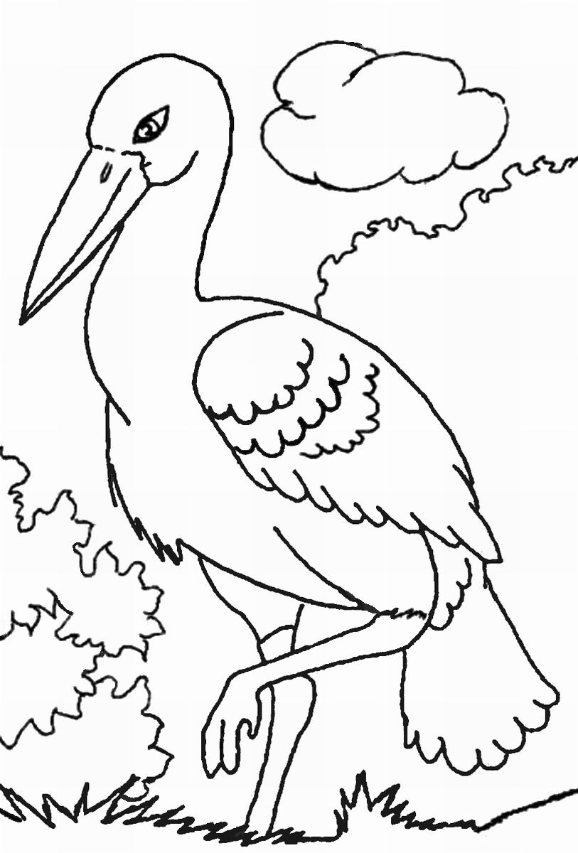 Storks Coloring Pages Coloring Home