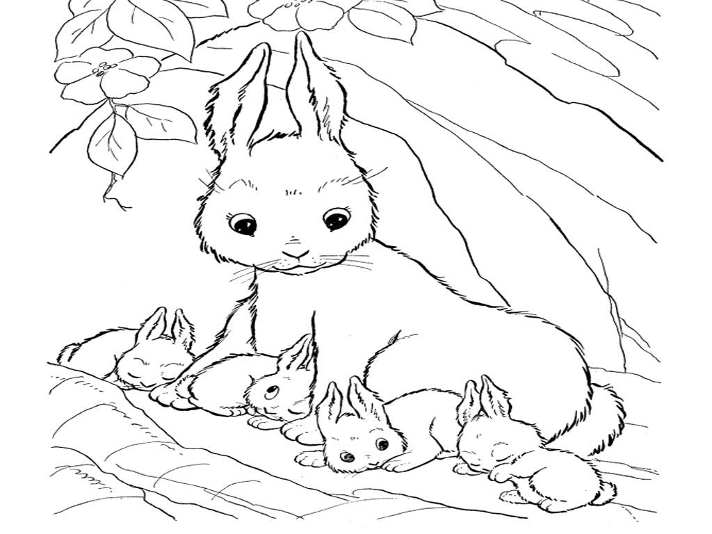 Cute Bunny Coloring Pages To Print - Coloring Home