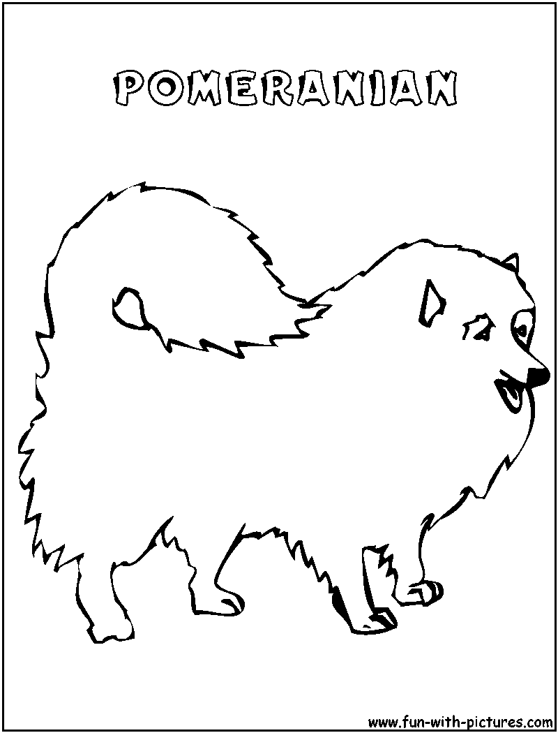 pomeranian coloring pages free-#23