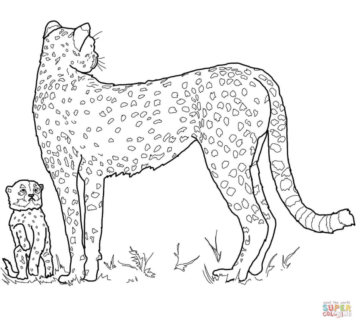 Leopard Coloring Pages Pdf : Coloring pages cheetah girls home