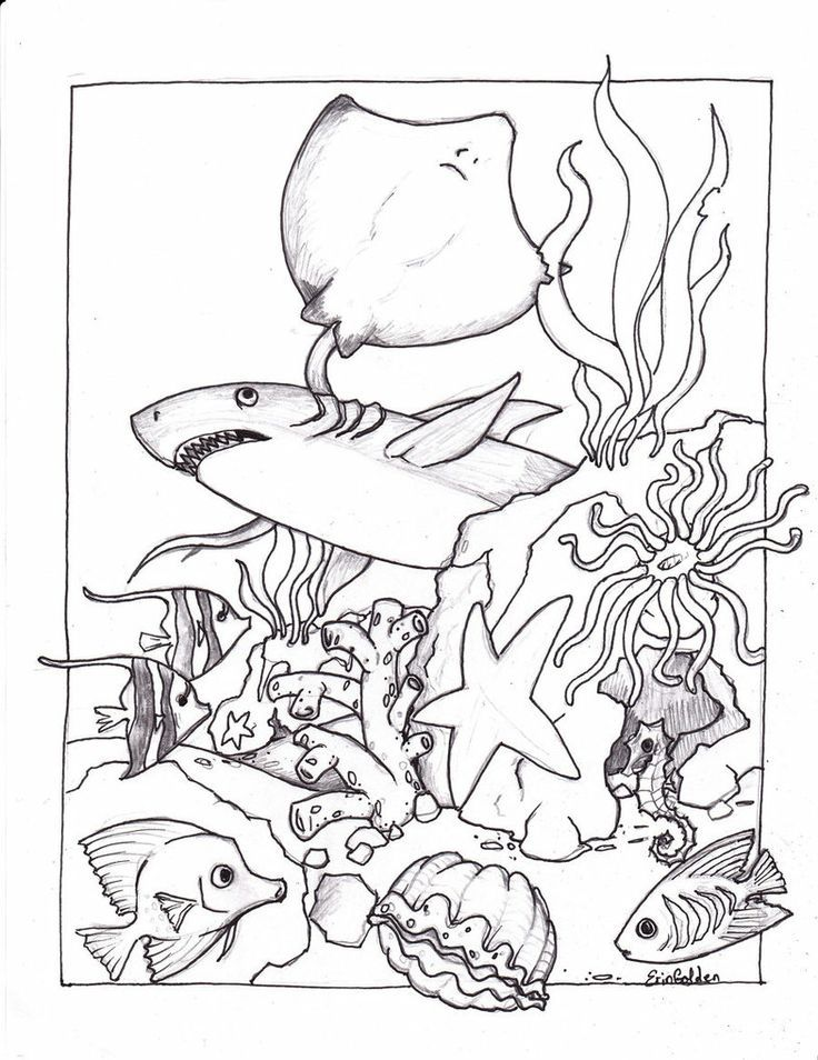 Pin by Kimji Soo on School Learning Underwater Friends Coloring Pages…
