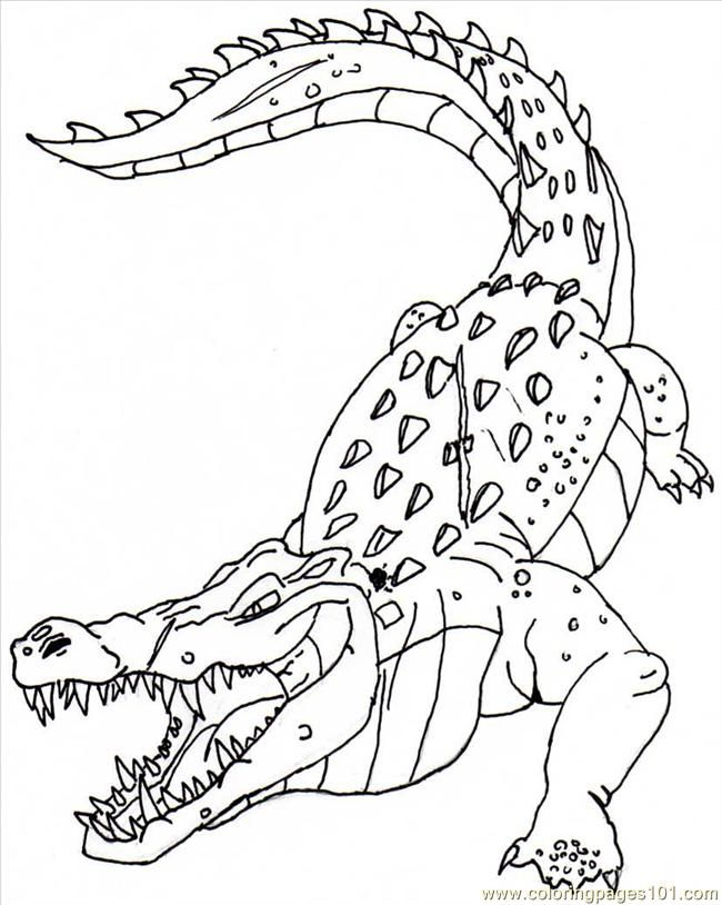printable coloring pages crocodile - photo #15