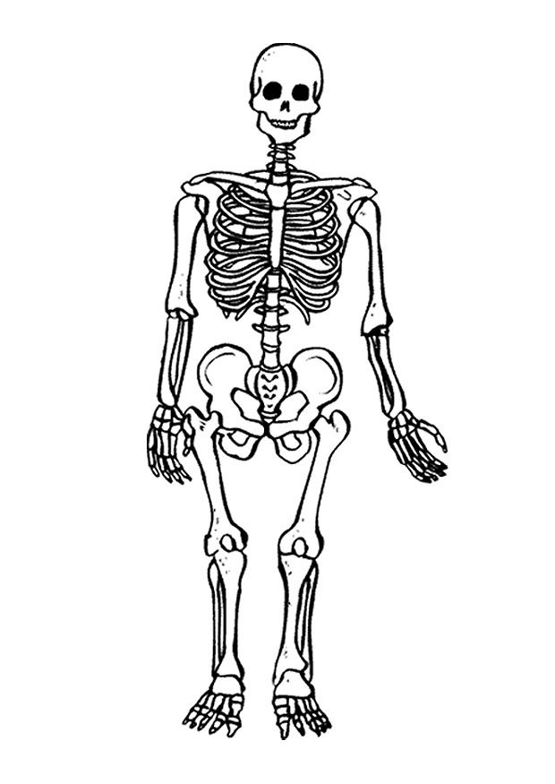 Bone Coloring Page - Coloring Home