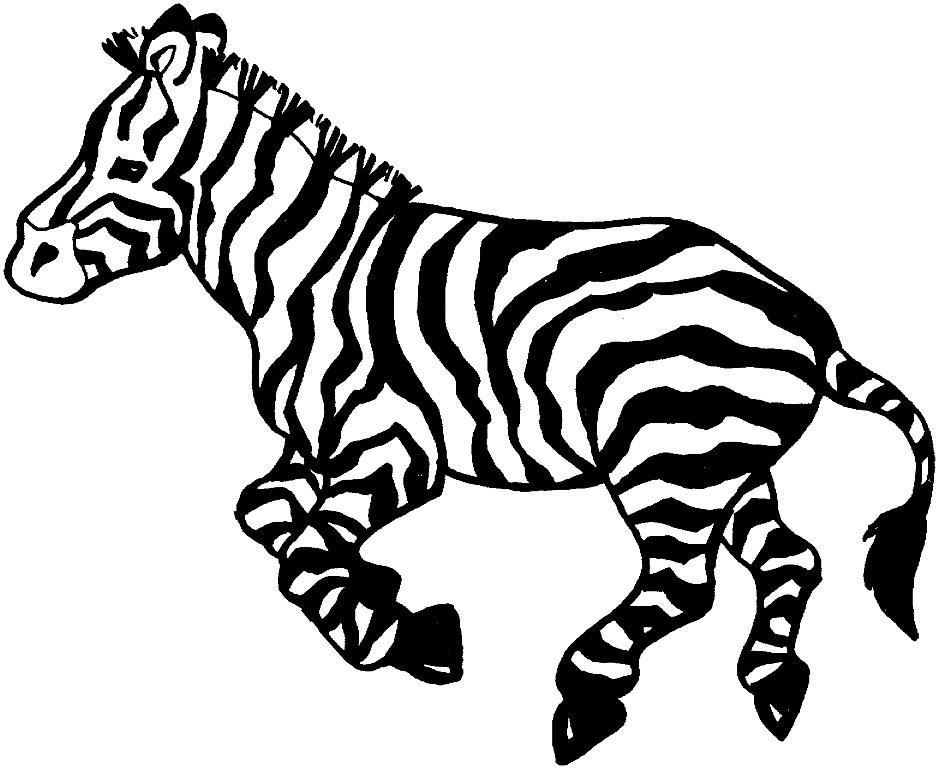 Zebra Pictures For Kids Zebra Coloring Pages For Kids