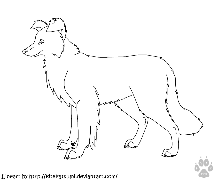 rough collie coloring pages - photo#23