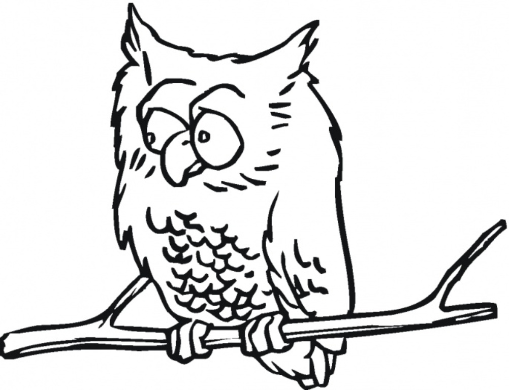 Hard Owl Coloring Pages Images Amp Pictures