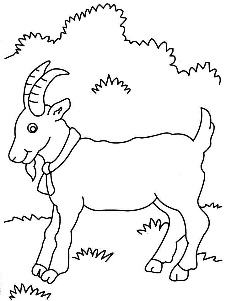 Goat Printables Coloring Pages
