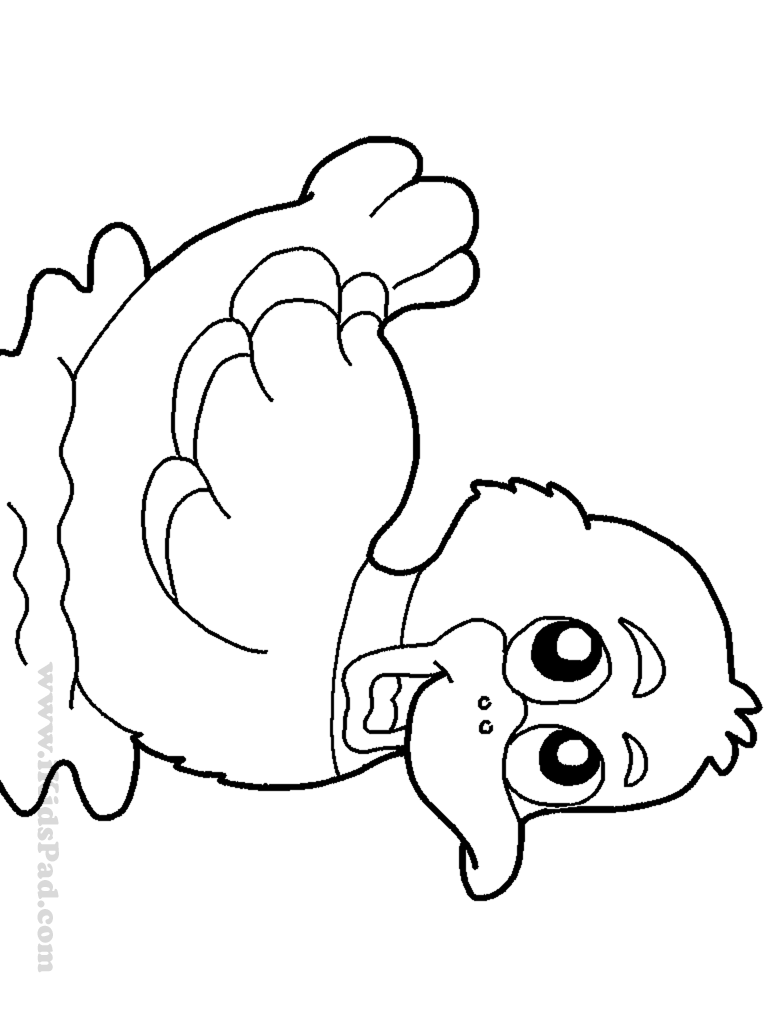 cute baby duck coloring pages - photo#9