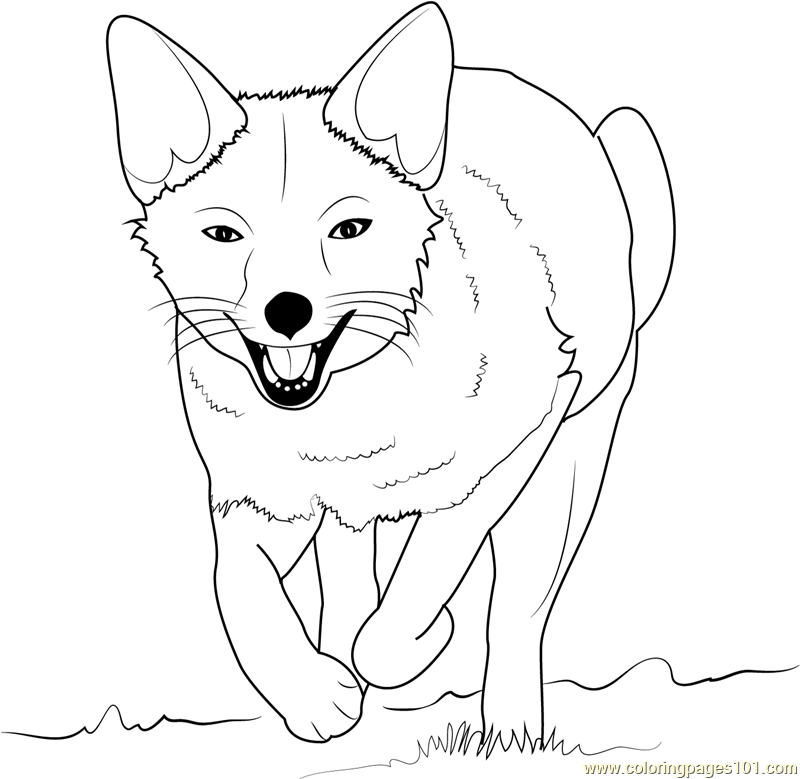 template of a fox - cute fox coloring pages