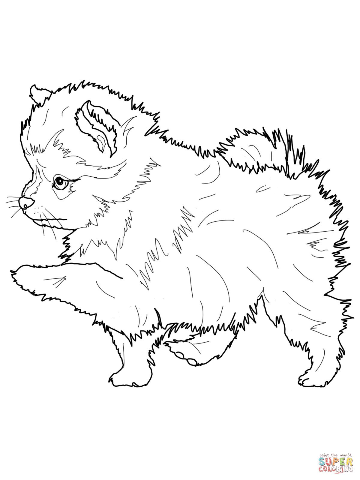 Realistic Puppy Coloring Pages Coloring Pages Realistic Husky