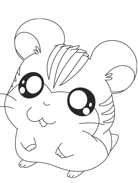 coloring pages hamster - photo#16