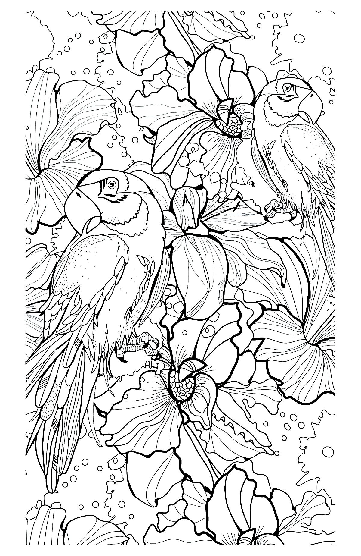 Complex coloring pages of animals coloring home for Elaborate coloring pages